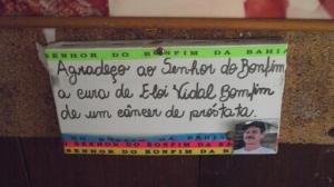 Sansug grande Lisle  Bomfim 2013(311)